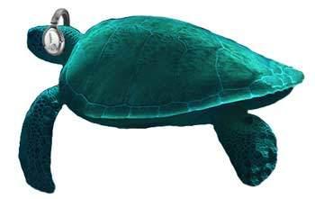 Tortuga Audio Logo Turtle